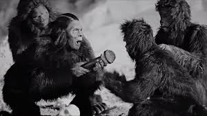 doom-dada-apes