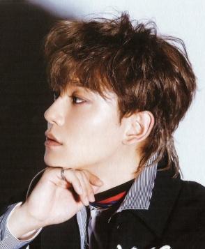 Chen EXO Mullet